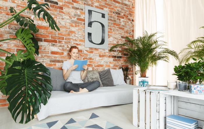 Acheter appartement avec un locataire