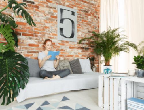 Acheter un appartement avec un locataire : les pièges à éviter